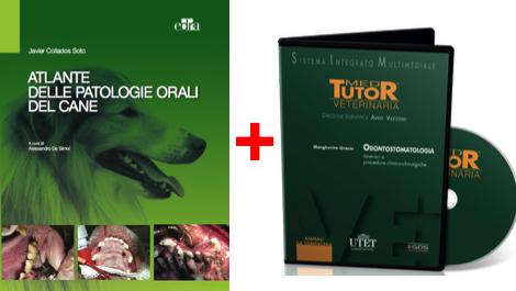 ODONTOSTOMATOLOGIA IN PROMOZIONE - TESTO: ATLANTE PATOLOGIE ORALI DEL CANE + DVD ODONTOSTOMATOLOGIA PROCEDURE  CLINICO-CHIRURGICHE