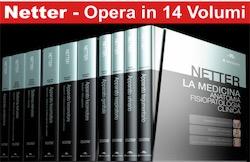 Netter Atlante di Anatomia, Fisiopatologia clinica ( 14 Volumi ) Opera completa in 4 Cofanetti