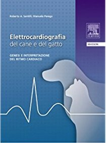 Elettrocardiografia del cane e del gatto - Genesi e interpretazione del ritmo cardiaco