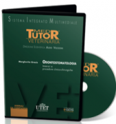 DVD ( Med Tutor Veterinaria ) - ODONTOSTOMATOLOGIA - Itinerari e procedure clinico-chirurgiche